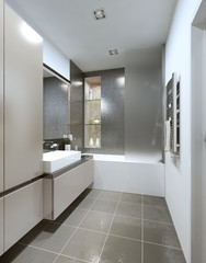 Contemporary style bathroom