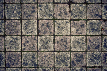 Closeup of terrace bricks