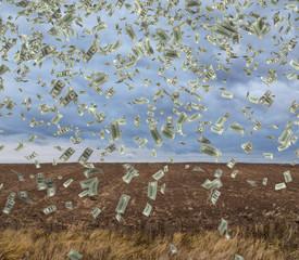 falling money on field