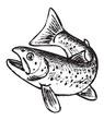 trout pattern - 75142746