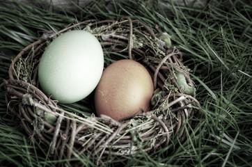 Bunte Eier im Osternest, altmodisch