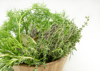 Variety of fresh aromatic herbs