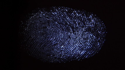 The discovery of the fingerprint on the surface