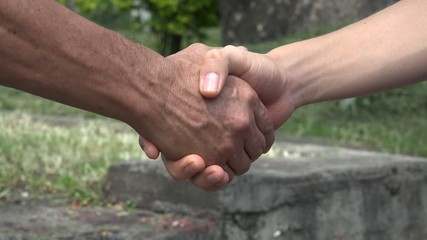 Handshake, Shaking Hands, Greeting