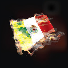 mexico flag burning