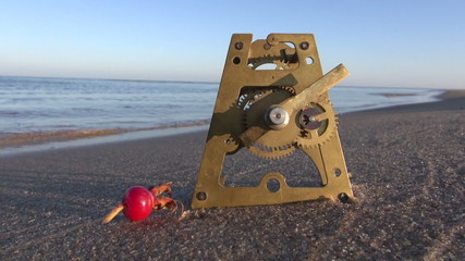 antique brass clock gears and rose hip on  sea beach