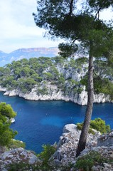 Les calanques de Marseille et Cassis