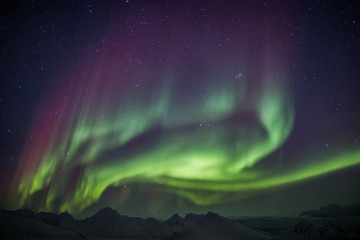 Aurora Borealis on the Arctic sky