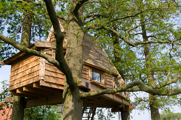 Tree house as a holiday home
