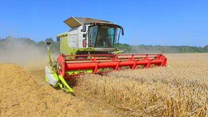 Grain harvesting combine.