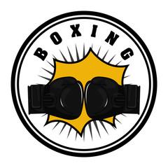 boxing sport