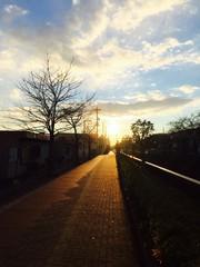 冬の朝日と道