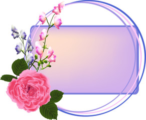pink rose and small flowers in frame isolated on white