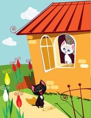 Cats serenade