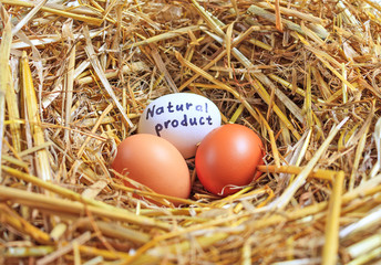 Three chicken eggs natural product