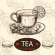 sketch illustration. tea hand drawn
