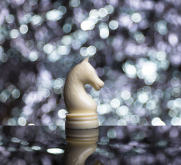 White Chess Horse on blur background.