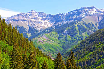 Mountains and forest surrounding Telluride, Colorado.