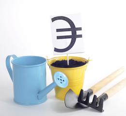 Рост курса Евро в горшочке с лейкой