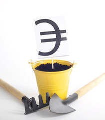 Евро в горшочке рядом лопата и грабли