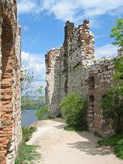 Devicky Castle Ruins