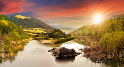 forest river with stones and grass at sunset