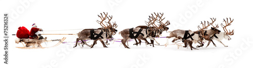 Santa Claus is sitting in a deer sleigh