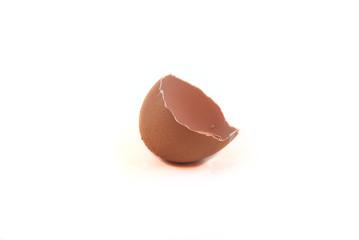 Half Egg Shell
