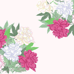 Background with bouquet  pink and white peonies