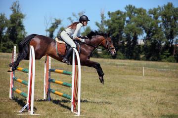 Action shot of horse jumping hurdle