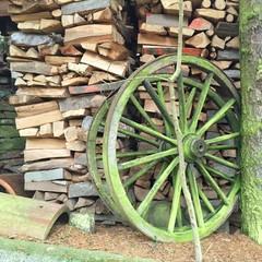 Viele Holzscheite als Kaminholz