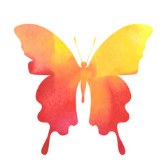 colorful red-yellow watercolor butterfly