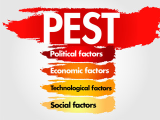 PEST Business analysis for presentation, business plan