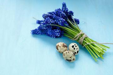 Hyacinth with quail eggs on a blue plywood