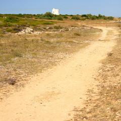 Sentiero, strada, terra battuta, pista,
