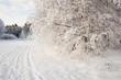 winter landscape track footsteps