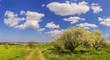 Parco Alta Murgia:paesggio primaverile. -(Puglia) ITALIA-