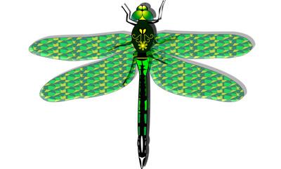 Dgragonfly green