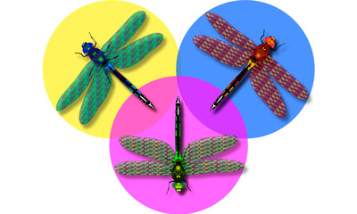 Dragonfly colour background