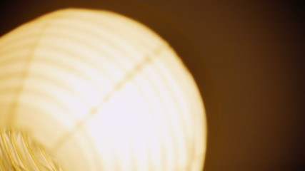 Light bulb chinese paper lamp bouncing