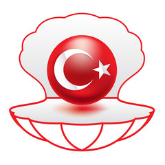 İllüstrasyon; İnci Türk Bayrağı