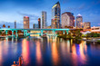 Tampa, Florida Skyline - 75247176