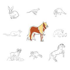pony, Przewalski's horse, otter, rabbit, vector