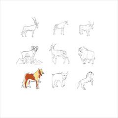 sheep, goat, pig, ox, ungulates, artiodactyls, okapi, yak, buffa
