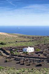 Lanzarote - Blick zur Felseninsel Roque del Este