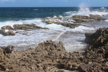vulcanic coast line Bonaire