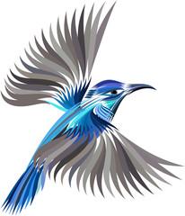 colored hummingbird