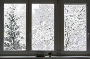 Books on the window in winter