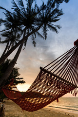 silhouette hammock on the beach
