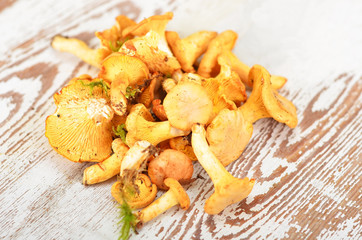 Chanterelle mushroom on textured vintage wooden background